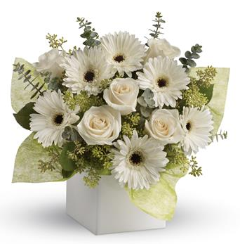 Timeless Treasure. Description: Send serenity with this artful arrangement of pure white roses and gerberas.