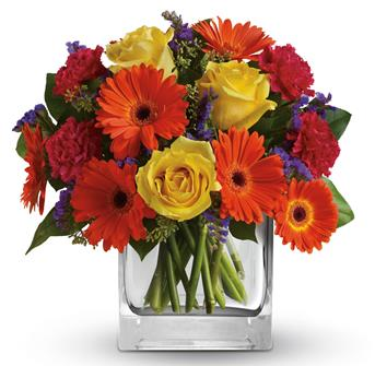 Citrus Splash. Description: Make a splash, Orange gerberas, yellow roses and hot pink carnations are a bold, beautiful gift for any happy occasion.
