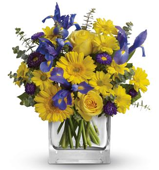 Summer Breeze. Description: As invigorating as a cool summer breeze, this amazing arrangement pairs eye-catching iris with golden gerberas and roses for a sunny-day sensation.