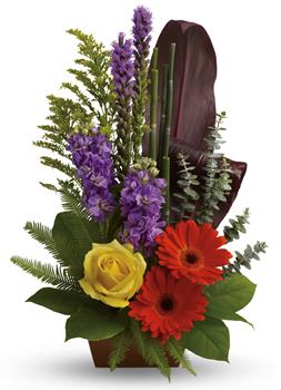 Garden Oasis. Description: Artfully yours. Impress that special someone with this natural sculpture featuring gerberas, roses, stock and ti leaves.