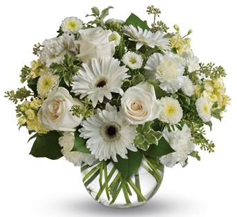 Isle of White. Description: Wondrous white roses, gerberas and carnations in a vase bring a breath of fresh air to your special someone.