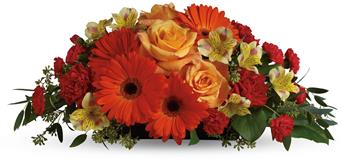 Sweet Sorbet. Description: A sweet treat everyone will enjoy! Delight your special someone with this outstanding orange arrangement of gerberas, roses and alstroemeria.