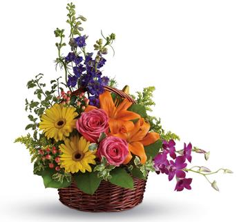 Cheers to You. Description: Celebrate their greatness with this glorious rainbow of lilies, roses, gerberas, orchids and delphinium!