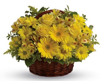 Basket of Sunshine. Description: They will be walking on sunshine after receiving this cheerful basket of roses, gerberas, alstroemeria and daisies!