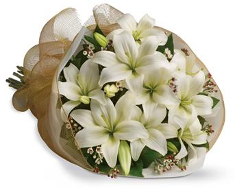 White Delight. Description: Let someone know they are special by sending these fragrant blooms of bright white and cream lilies.