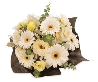 White Beauty. Description: An elegant arrangement of white gerberas, lisianthus and spray roses that will lighten up any room.