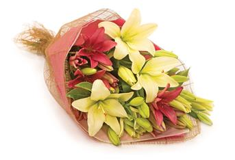 Lily Devine. Description: An all-time devine favourite bouquet showcases a combination of long lasting coloured lilies.