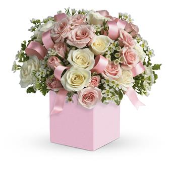 Celebrating Baby Girl. Description: Celebrate the cutest baby girls arrival with this charming box arrangement that arrives chock full of pretty flowers. Perfect for baby showers too!
