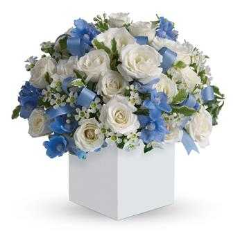 Celebrating Baby Boy. Description: Celebrate the coolest baby boys arrival with this charming box arrangement that arrives chock full of pretty flowers. Perfect for baby showers too!