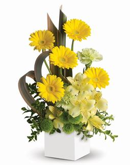 Sunbeam Smiles. Description: Send smiles across the miles. This artful arrangement of sunny yellow blooms in a modern pot is specially designed to warm hearts and brighten days!