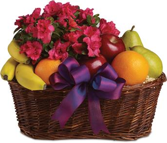 Fruit and Blooms. Description: Here is a tasteful gift for any occasion. Fruit and a flowering plant, what could be better than that?