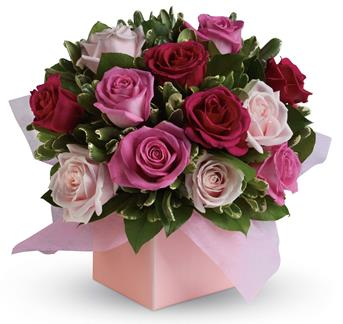 Blushing Roses. Description: Sing her a love song - with roses. This lush red and pink rose arrangement tells her just how much you care.
