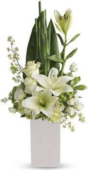Peace and Harmony. Description: Your sincere wishes for peace and harmony resonate beautifully in this zen-like arrangement of white blooms and sculptural greens.
