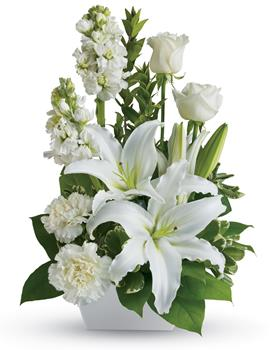 White Simplicity. Description: If you want to send your warmest thoughts to show how much you care, this lovely arrangement with white carnations and lilies sends your thoughts compassionately.