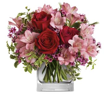 Hearts Treasure. Description: Make her blush with the beautifully blushing blooms of this romantic arrangement. Arranged inside a glass cube that catches the light and radiates your love, it is a heartfelt gift she will always remember!