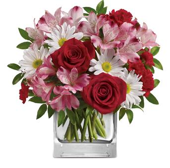 Undying Love. Description: Fresh and fabulous, this stylish blend of white daisies, red roses, pink alstroemeria will brighten any occasion. Arranged inside a glass cube, it will be sure to delight.