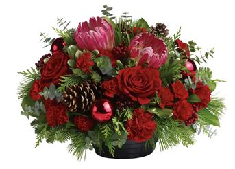 Christmas Grandeur. Description: All will be bright this season when you send this joyful rose and native Christmas arrangement. This gorgeous arrangement, will brighten up the festivities beautifully.
