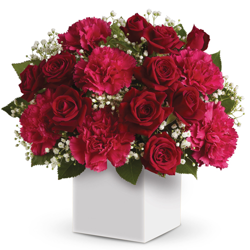 Heart of Christmas. Description: Joyful red flowers presented in a white box make the perfect gift for Christmas.