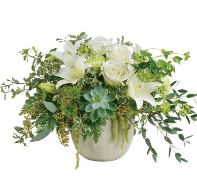 Tanami Beauty. Description: Natural elegance to celebrate any occasion! Like a flourishing garden, this gorgeous bouquet of luxurious white blooms and fresh greens in a weather slate pot is a feast for the senses.